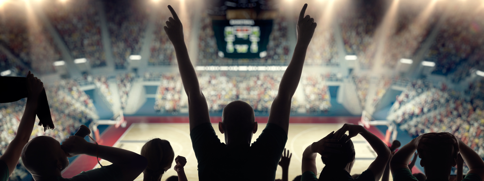fans watching a basketball game